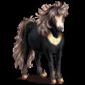 Pony Connemara Liver chestnut