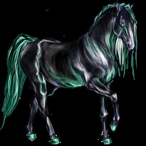 Cheval de selle Quarter Horse Rouan