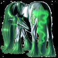Cavalo de passeio Quarto de Milha Castanho