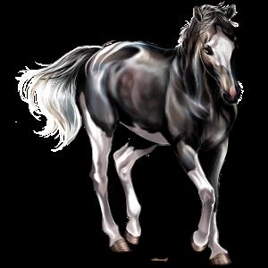 Ratsuhevonen Paint-hevonen Punaruunikko, tobiano