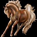 Pony Shetland Black