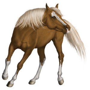 Riding Horse Quarter Horse Flaxen Chestnut