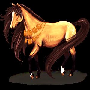 Cheval de selle Quarter Horse Alezan Crins Lavés