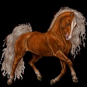 Pony Welsh Palomino