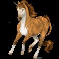 Riding unicorn Russian Don Horse Chestnut