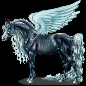 Riding pegasus Shagya Arabian Dapple Gray