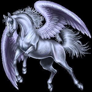 Pegasus Akhal-Teke Bay