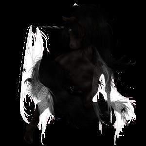 Unicorn Paint Horse Șarg pătat