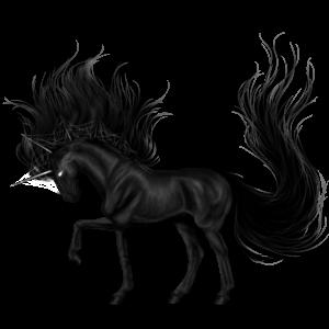 Jezdecký jednorožec Arabský plnokrevník Vraník