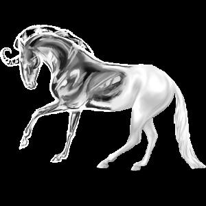 Jezdecký jednorožec Arabský plnokrevník Pstružák