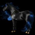 Cavalo de passeio Holstein Castanho escuro