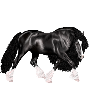 Ponypegas Connemara Hnědý bělouš