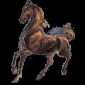 Caballo de montar Pura raza española Cremello