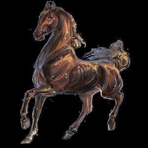 Koń wierzchowy Koń czystej krwi arabskiej Dereszowata