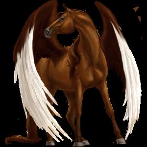 Pegasus Arabian Horse Dark Bay