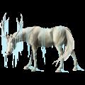 Riding unicorn Appaloosa Palomino Blanket