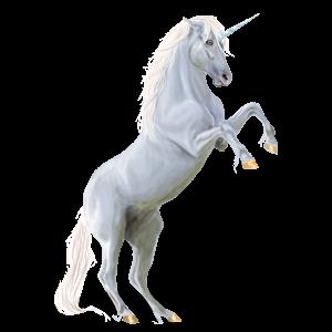 Riding unicorn Purebred Spanish Horse Dapple Grey