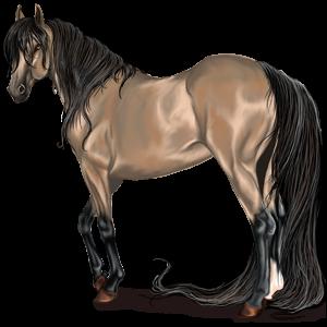 Riding Horse Purebred Spanish Horse Flaxen Liver chestnut