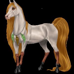 Koń wierzchowy Koń pełnej krwi angielskiej Ciemnogniada