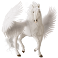 Pegasus Araber Fuchs