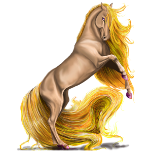 Cavalo de passeio Friesian Preto