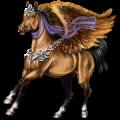 Pegaso Cavallo Arabo Baio
