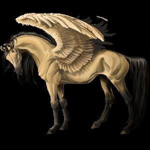 Pegaz wierzchowy Koń czystej krwi arabskiej Bułana