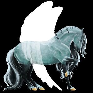 Pegasus Purebred Spanish Horse Black