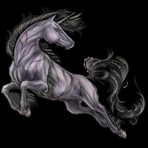 Jezdecký jednorožec Trakénský kůň Myšák