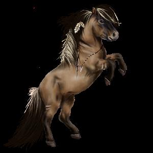 Pony Shetlander Gestippeld grijs