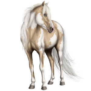 Riding Horse Lusitano Cremello