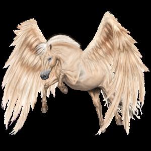 Pegasus-Pony Norweger Braunfalben