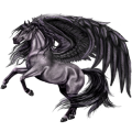 Pegasus Friesian Black