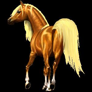 Ratsupegasos Arabianhevonen Kärpäskimo