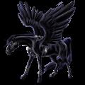 Pegasus Friesian Black