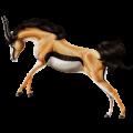 Riding unicorn Russian Don Horse Flaxen Chestnut