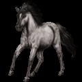 Pegasus pony Shetland Mouse Gray