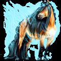 Cavalo de passeio Akhal-Teke Rosilho castanho