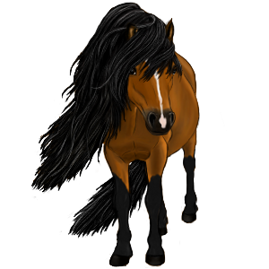 Pony Newfoundland Pony Mouse Gray