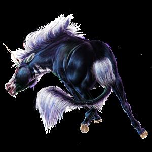 Licorne de selle Holstein Noir
