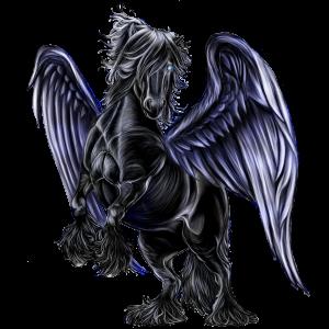 Riding pegasus Friesian Black