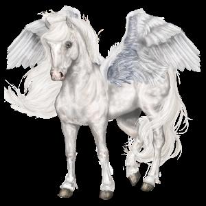 Pegasus-Reitpferd Orlow-Traber Apfelschimmel