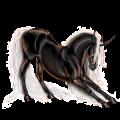 Unicornio Criollo argentino Roano