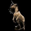 Jednorożec wierzchowy Koń andaluzyjski Jasnosiwa