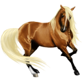 Riding Horse Thoroughbred Flaxen Chestnut