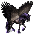 Riding pegasus Dapple Gray