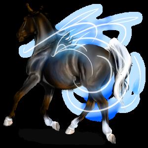 Pegasus Brumby Dunkelbrauner