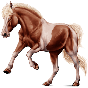 Pony Kerry Bog Palomino