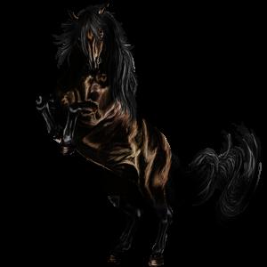 Pegasus-Reitpferd Argentinischer Criollo Rappe mit Tobiano-Scheckung