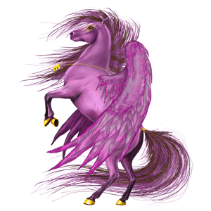 Cheat Demon Pegasus Marwari Black 28866533 Howrse